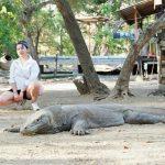 Trip Pulau Komodo