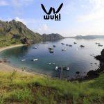 komodo open trip wuki travel