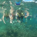 trip pulau sangiang murah